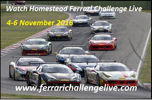 Watch Homestead Ferrari Challenge Live